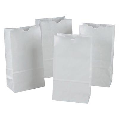 Pacon Corporation PAC72020 Kraft Bags, 6
