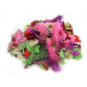 Charles Leonard Creative Arts™ Dyed Guinea Spotted Feathers, Assorted Colors