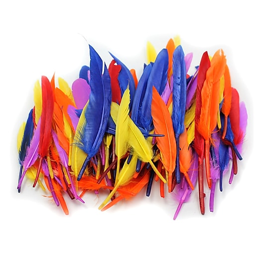 "Charles Leonard Creative Arts™ Duck Quill Feathers, Assorted Colors, 3"" - 5"""