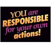 Trend® Educational Classroom Posters, You are responsible for your own actions!