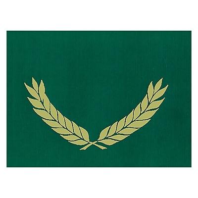 Flipside, Embossed Certificate Folders Green, 30/pk (H-VA341)