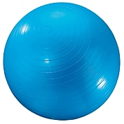 """Dick Martin Sports Exercise Ball, 24"""", Blue (MASGYM24)"""
