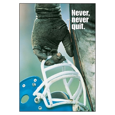 Trend® Educational Classroom Posters, Never, never, quit.