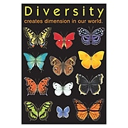 Trend® Educational Classroom Posters, Diversity creates dimension…