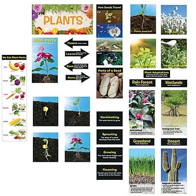 Creative Teaching Press, Plants Mini BB St Gr K-2, 26