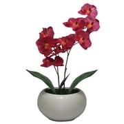 Elementals – Plante artificielle : orchidée phalène, violet fuchsia