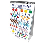 New Path Learning® Number Sense Curriculum Mastery® Flip Chart Set