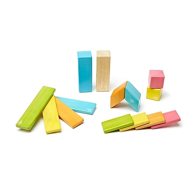 Tegu Wooden Tints Set, Assorted, 14 Pieces (TEG14PTNT306T)