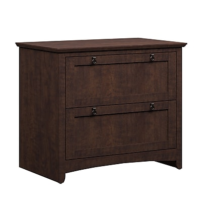 Bush Furniture Buena Vista 2-Drawer Lateral File, Madison Cherry