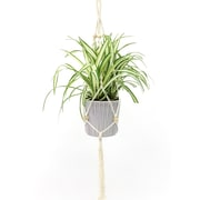 Cathay Importers Macrame Braided Rope With Wood Beads Plant Hanger