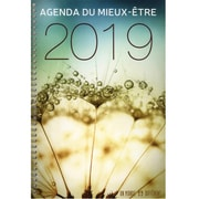 2019 Wellness Agenda - French