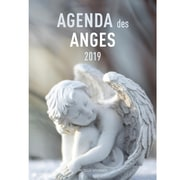 2019 Angels Agenda - French