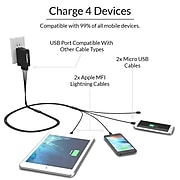 ChargeTech Universal Multi-Charging Cable Squid, (4) Braided Cables, 6' (V4)