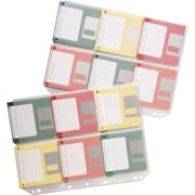 Fellowes Binder Sheets for Diskettes, 6/Sheet, 10/Pack