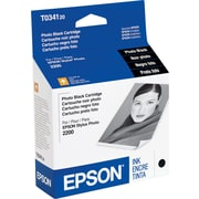 Epson 34 Photo Black Ink Cartridge (T034120)
