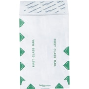 "Staples® 6"" x 9"" Tyvek® First-Class EasyClose™ Catalog Envelopes, 100/Box"