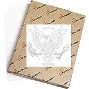 """AbilityOne U.S. Federal Seal Watermark Paper, White, 8 1/2""""(W) x 11""""(L),Case"""