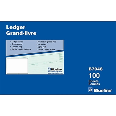 Blueline® Ledger Sheets, 9-1/4