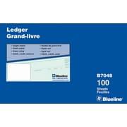 Blueline® - Feuilles de registre, 9 1/4 po x 11 7/8 po, B7048-B