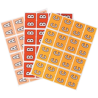 Oxford® Datafile® Compatible Alpha Labels,