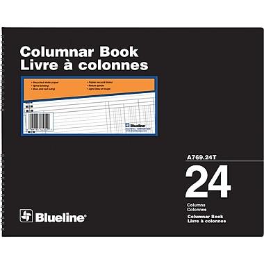 Blueline® A769 Columnar Book, A769-24T, 24 Columns