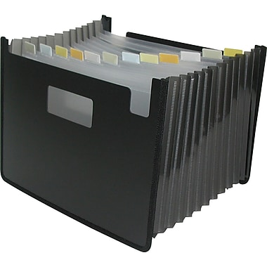 Winnable 13-Pocket Poly Expanding Desktop File, Letter