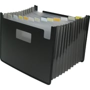 Winnable 13-Pocket Poly Expanding Desktop File, Letter