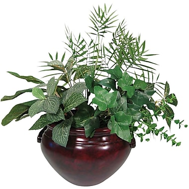 NuDell™ Ivy Plant with Mahogany Fiberglass Pot, 8 in.