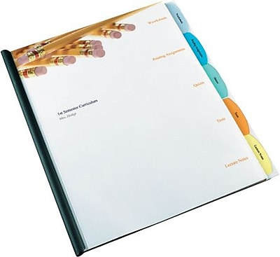 Wilson Jones Report Cover with View-Tab Dividers