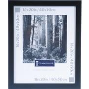 DAX Black Plastic Poster Frame, Plastic Window, 16 x 20