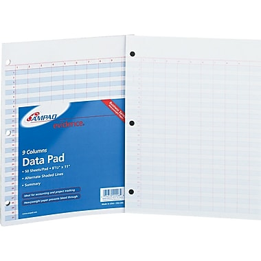 Ampad Evidence® Heavyweight Side-Punched Data Pad, 9+Summary Columns, 50 Sheets/Pad (22206)