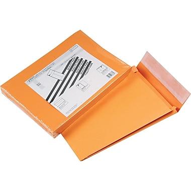 Quality Park Redi-Strip™ Redi-Strip™ Open-End Expansions Envelopes, 10