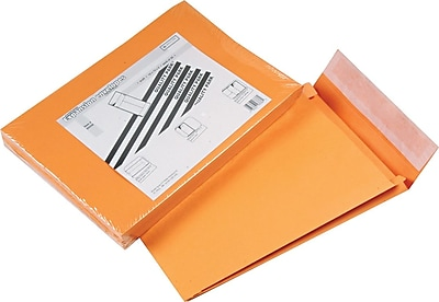 Expansion Envelopes for Bulky Mailings, 10x13