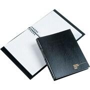 BlueLine® Account Pro™ Record Books