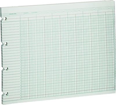 Wilson Jones® Double Page Columnar Sheets, 9-1/4