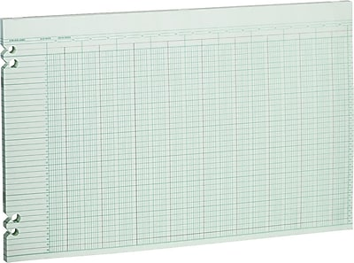 Wilson Jones® Double Page Columnar Sheets, 11