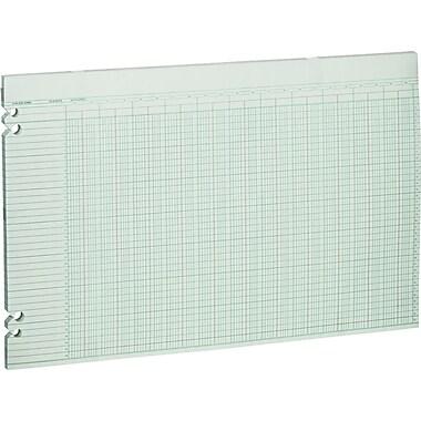 Wilson Jones® Double Page Columnar Sheets, 11