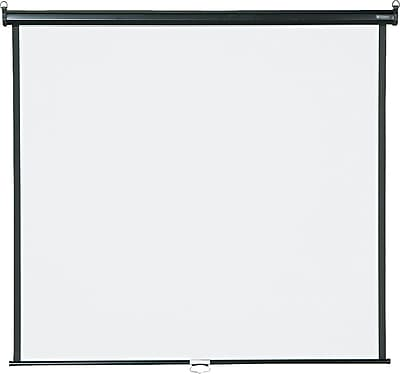 Quartet® Wall/Ceiling Projection Screen, 60