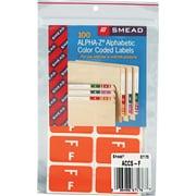 """Color Coded Label, """"F"""", Orange, 100 Labels Per Pack"""