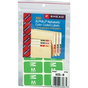"""Color Coded Label, """"M"""", Light Green, 100 Labels Per Pack"""