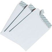 "Quality Park Redi-Strip™ Redi-Strip™ Open-End Catalog Envelopes, 6"" x 9"", White, 100/Bx"