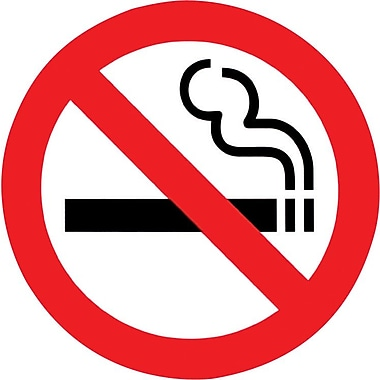 "Headline Sign® International Sign, ""No Smoking"", 9"""