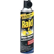 Raid Wasp and Hornet Killer by