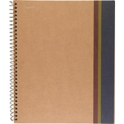 "Sustainable Earth by Staples Wirebound 1 Subject Notebook, 9 1/2"" x 6"", Each (16769)"
