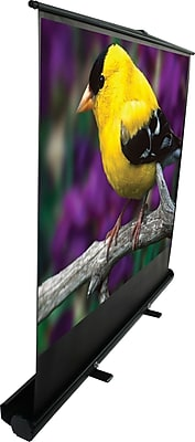 Elite ez-Cinema F135NWH, Projection Screen with floor stand, 135 in