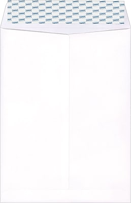 Staples EasyClose Catalog Envelopes, 6' x 9