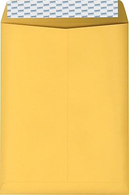Staples Kraft EasyClose Catalog Envelopes, 9