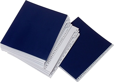Staples® EveryDay® File Fast Sorter, 31 Compartments (1-31 & Jan-Dec), Blue (5EDFS)