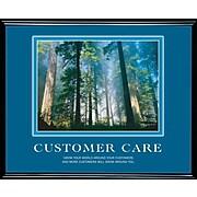 Customer Care  Framed Motivational Print
