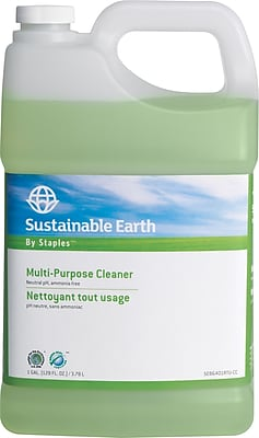 Sustainable Earth by Staples All-Purpose Refill, 1 gal. (SEB641001-A-CC)